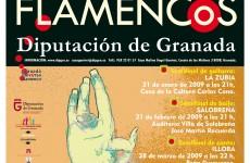 Cartel I Concurso Flamenco Jóven